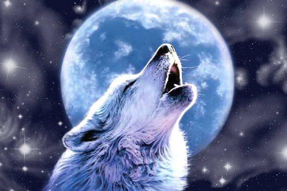 Virgo Full Moon 2 19 19 - Augustine's